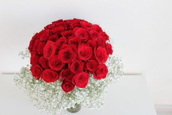 ramo de rosas rojas con paniculata blanca