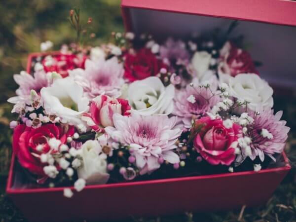 caja de flores frescas variadas de colores alegres