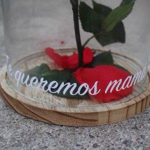 Rosa eterna mamá