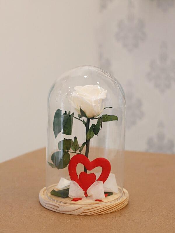 roba blanca preservada dentro de una urna de cristal para mama