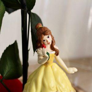 Rosa eterna Bella