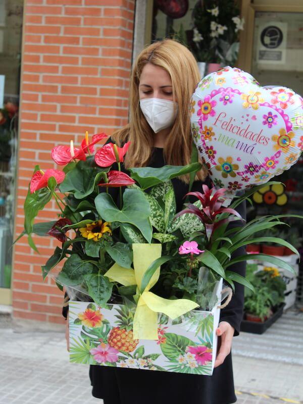 caja de plantas espectacular para regalar el día de la madre