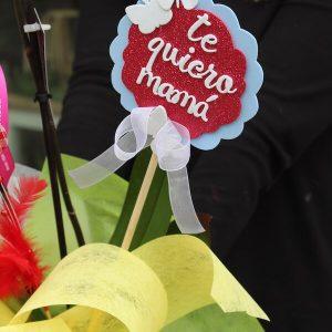 orquídea para mamá